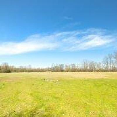 Washtenaw County Residential Lots & Land For Sale: E Northfield Church
