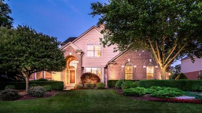 Northville Single Family Home For Sale: 16224 Oak Forest Court