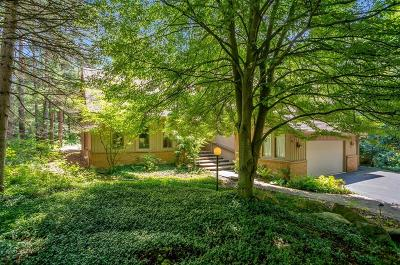 Ann Arbor Single Family Home For Sale: 3710 Fox Hunt Drive