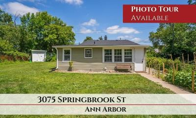 Ann Arbor Single Family Home For Sale: 3075 Springbrook Street