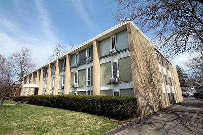Ann Arbor Condo/Townhouse For Sale: 1531 Packard Street #20