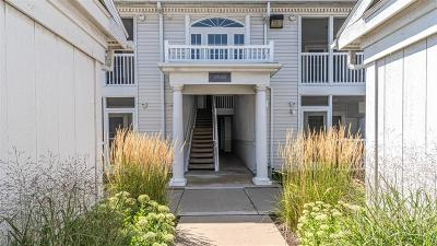 Ann Arbor Condo/Townhouse For Sale: 2255 S Main Street