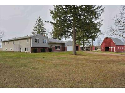 Washtenaw County Single Family Home For Sale: 5340 Hazel #5340 Haz