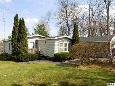 Hillsdale County Single Family Home For Sale: 3435 Pioneer