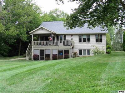 Lenawee County Single Family Home For Sale: 8826 Irish Mist