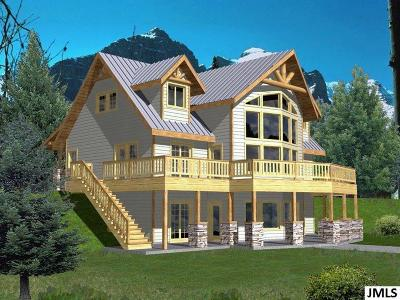 Lenawee County Single Family Home For Sale: 8000 Dalton #Lot 1 Wi