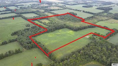 Residential Lots & Land For Sale: N Cronk Rd