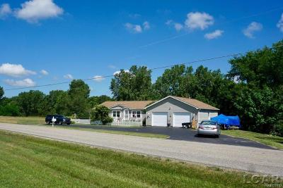 Hillsdale County Single Family Home For Sale: 10515 Woodbrook Drive
