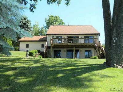 Hillsdale County Single Family Home For Sale: 14083 Grandview Drive