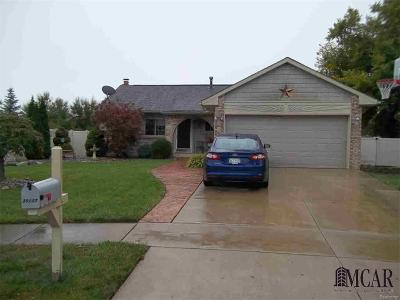 Brownstown Single Family Home For Sale: 20227 Red Cedar Drive