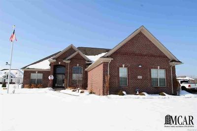 Flat Rock Single Family Home For Sale: 28498 Liparoto