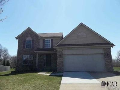 Brownstown Single Family Home For Sale: 34003 Crooks Ct