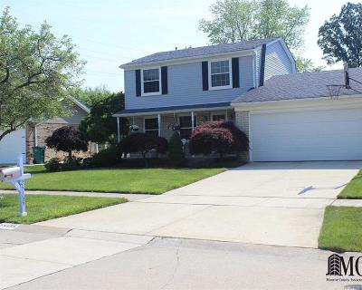 Oakland County, Wayne County Single Family Home For Sale: 25155 Blanche Ct