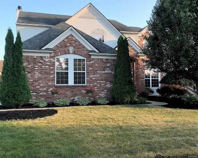 Flat Rock Single Family Home For Sale: 24613 Fairlawn Dr