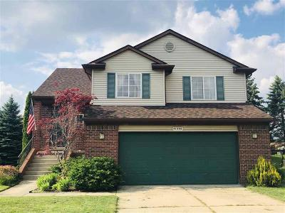 CANTON Single Family Home For Sale: 41306 Westfield