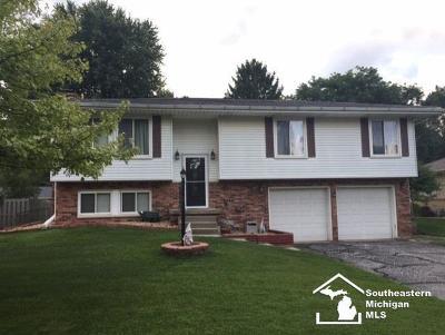 Monroe County Single Family Home For Sale: 7563 Chapelview