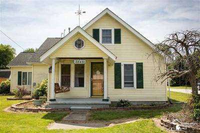 New Boston, Huron Twp Single Family Home For Sale: 28431 King