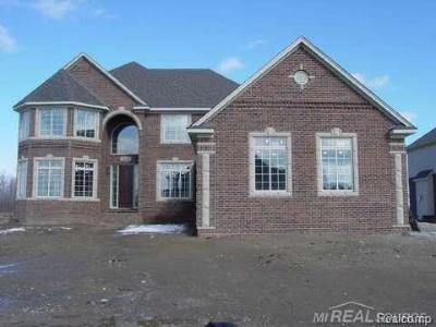 Shelby Twp Single Family Home For Sale: 14173 Provim Forest