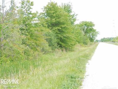 Macomb Twp Residential Lots & Land For Sale: Hayes