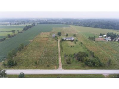 Saint Clair County, St. Clair County Single Family Home For Sale: 9681 Norman
