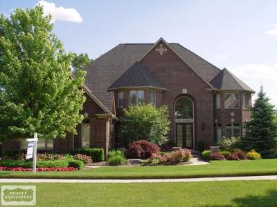 Rochester Hills Single Family Home For Sale: 877 Quarry