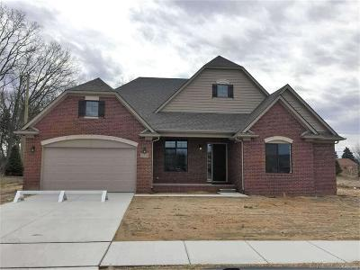 Sterling Heights Single Family Home For Sale: 14700 Hannebauer Ct.