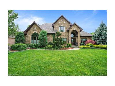 Sterling Heights Single Family Home For Sale: 3096 Mangrove