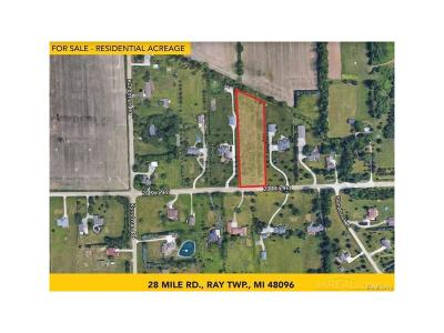 Ray Twp Residential Lots & Land For Sale: 28 Mile