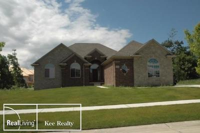 Bruce Twp Single Family Home For Sale: 72163 McKay