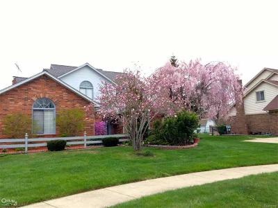 Sterling Heights Single Family Home For Sale: 41101 Savory