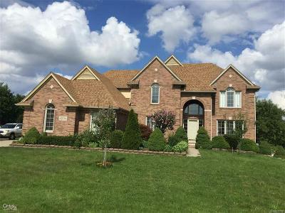 Sterling Heights Single Family Home For Sale: 42636 Stallion