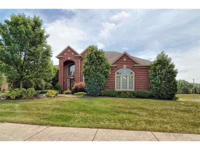 Rochester Hills Single Family Home For Sale: 6602 Chatham Cir