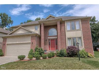 Rochester Hills Single Family Home For Sale: 331 Mystic Valley