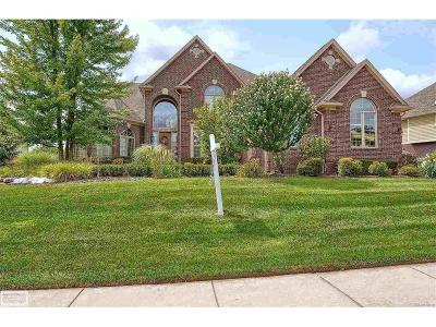 Rochester Single Family Home For Sale: 1372 Clear Creek Drive