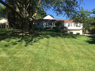 Rochester Single Family Home For Sale: 5120 N Rochester Road