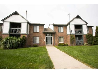 MACOMB Condo/Townhouse For Sale: 15216 Ashley