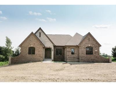 Addison Twp Single Family Home For Sale: 2258 Heidi