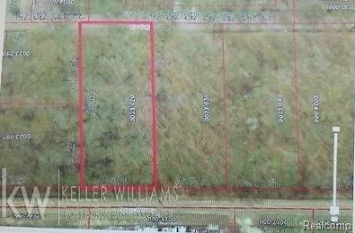 Port Huron Twp MI Residential Lots & Land For Sale: $12,900