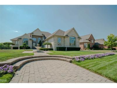 Shelby Twp Single Family Home For Sale: 47843 Milonas