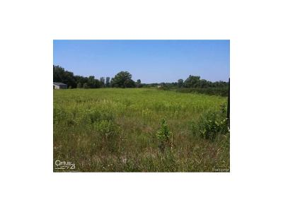 Armada Twp Residential Lots & Land For Sale: 80601 Capac