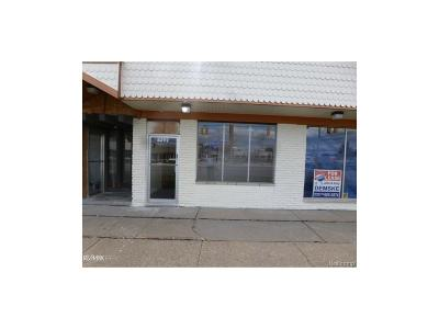Warren Commercial Lease For Lease: 8292 12 Mile