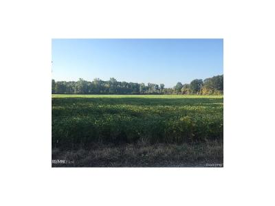 Armada Twp Residential Lots & Land For Sale: 34 Mile