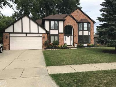 Troy Single Family Home For Sale: 4158 Vassar Drive