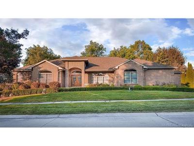 Clinton Twp Single Family Home For Sale: 18500 Tara