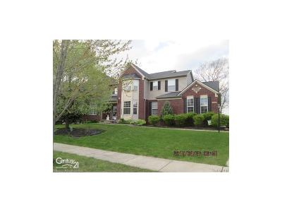 South Lyon Single Family Home For Sale: 1339 Cartwright