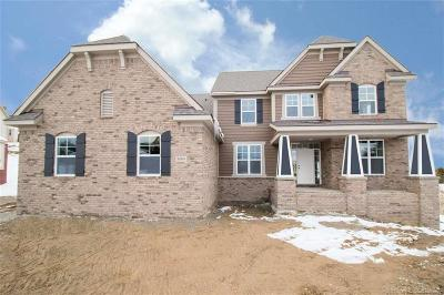 White Lake Single Family Home For Sale: 8004 Trenton Drive