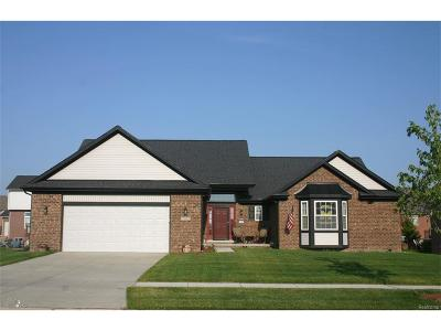 Brownstown Twp Single Family Home For Sale: 23975 Brompton Rd