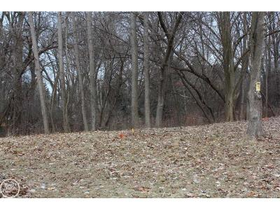 Bloomfield Hills Residential Lots & Land For Sale: 2041 Dell Rose