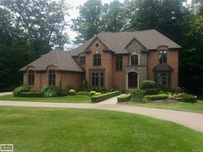 Rochester Single Family Home For Sale: 1589 Scenic Hollow Drive