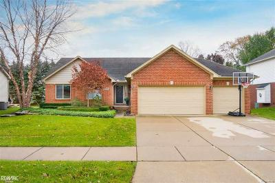 Shelby Twp Single Family Home For Sale: 8258 Lindamar Ln